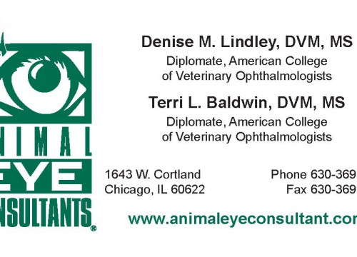 Animal Eye Consultants raised ink business card