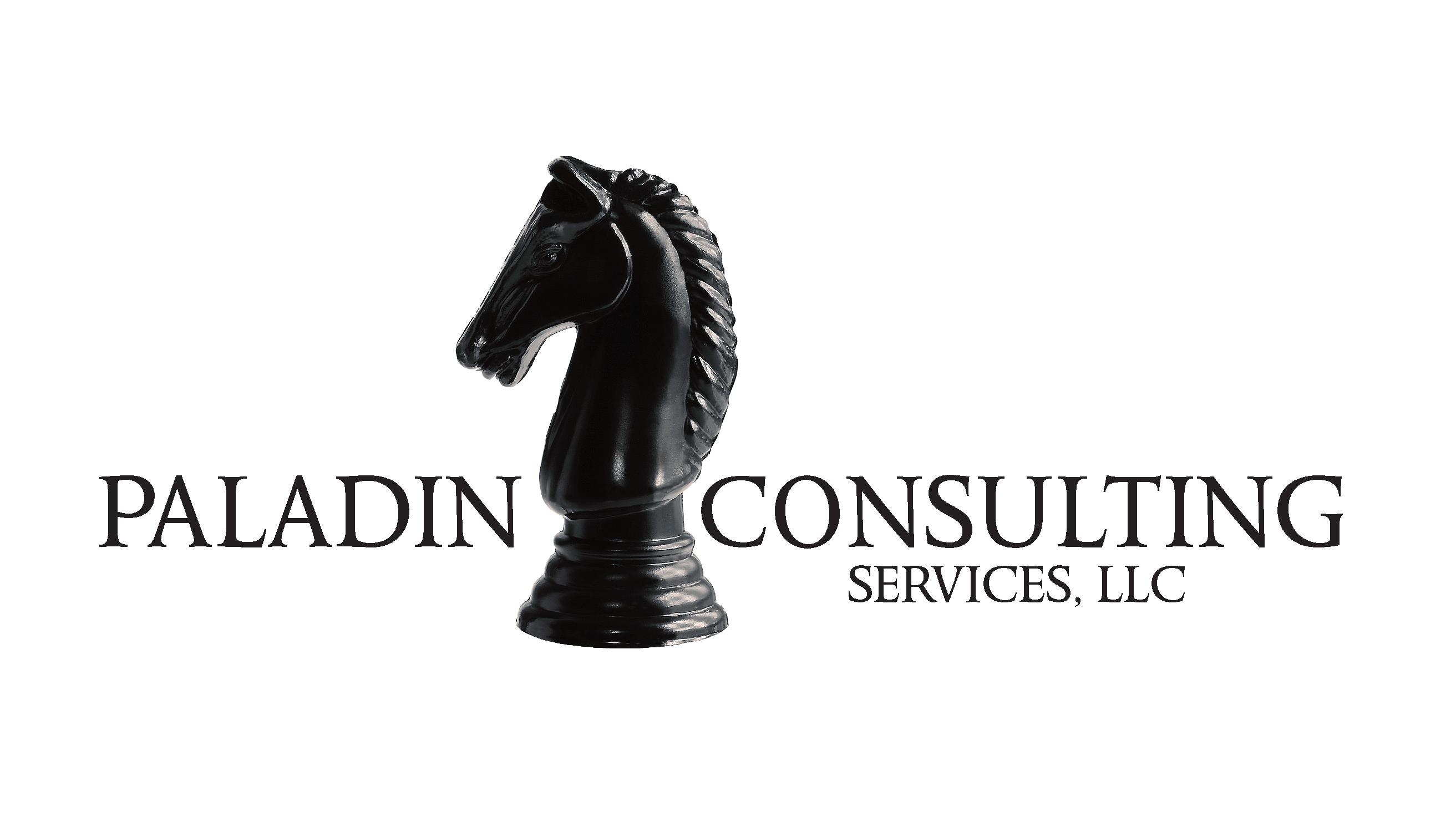 Logo design services dream ink paladin consultings logo design colourmoves