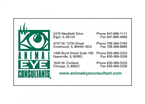 Animal Eye Consultants' business card magnet