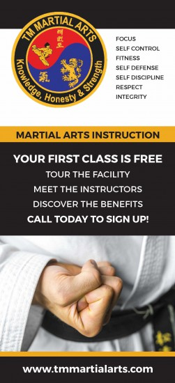 This is an example of TM Martial Arts' rack card design