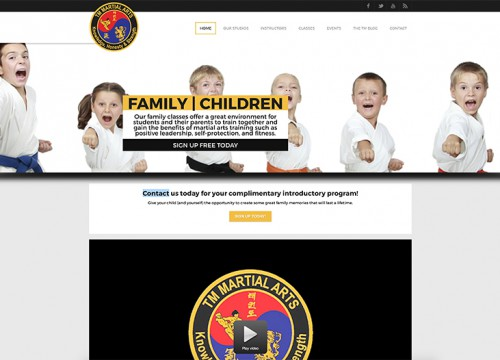 this is an example of TM Martial Arts' martial arts website design