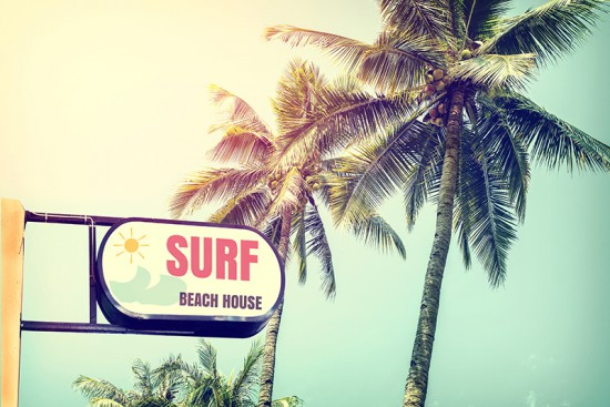 Surf Shop signage under palm trees as an example of retail signage