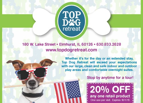 Print ad design with dog holding US flag in mouth and company info