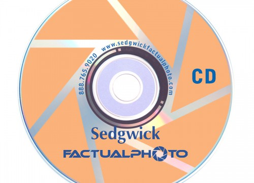 Branded blank compact disc with custom CD printing in blue and orange