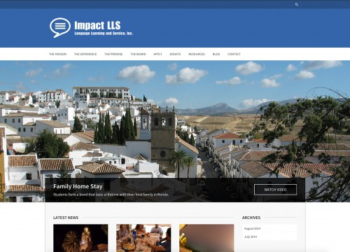 Home page of Impact LLS non profit website design