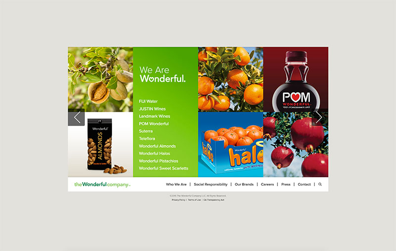 Web designs lessons taught my the Wonderful food products website design