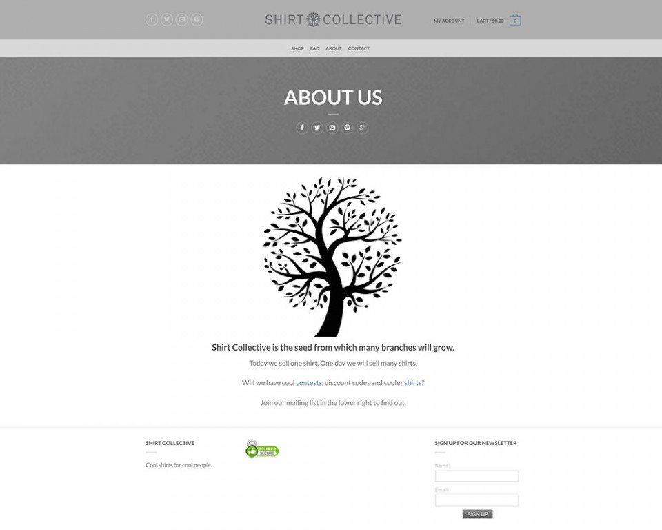 A screenshot of the About page of Shirt Collective's website